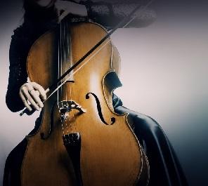 violoncelos