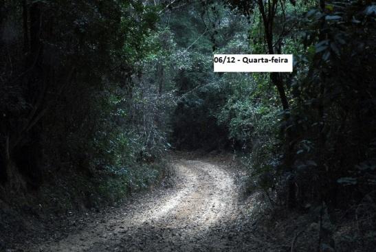 trilha noturna