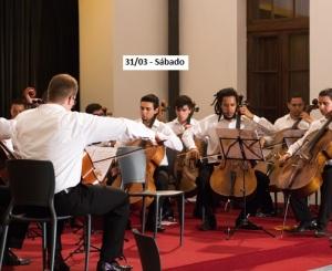 ensemble de violoncelos